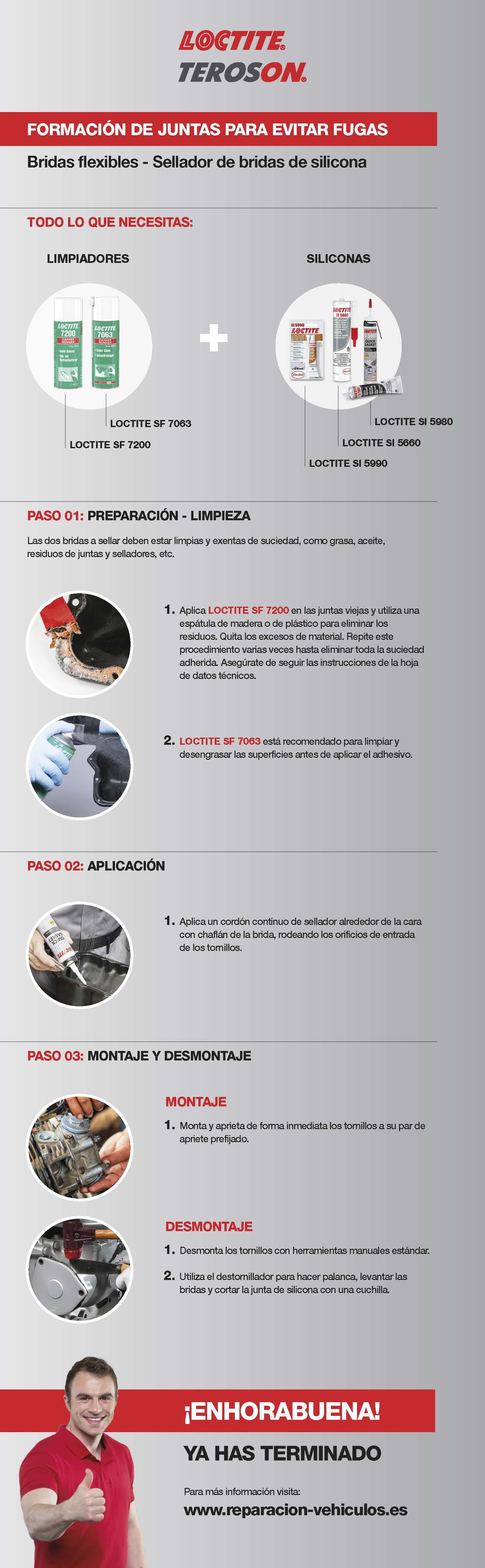 LOC_Infografia_Bridas_flexibles (1).jpg