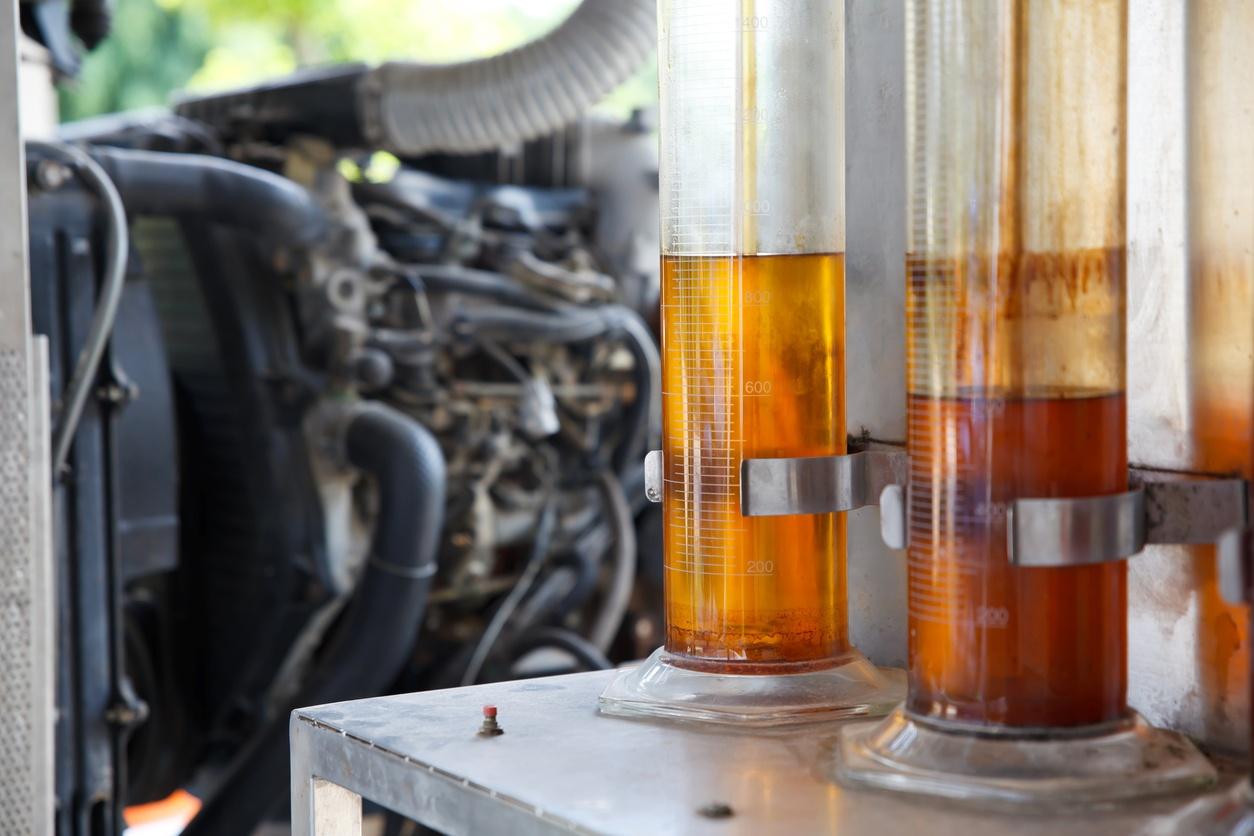 Pros y contras del biodiésel respecto al diésel y la gasolina